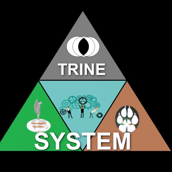 Triangle&logos